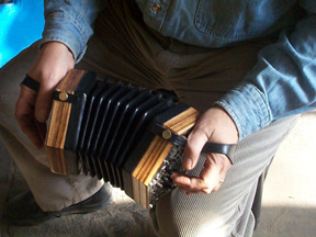 close-up of playing zebrawood concertina